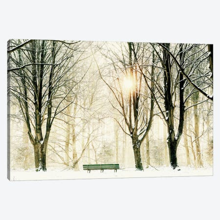 Too Cold To Sit Canvas Print #ICS677} by Lars van de Goor Canvas Wall Art