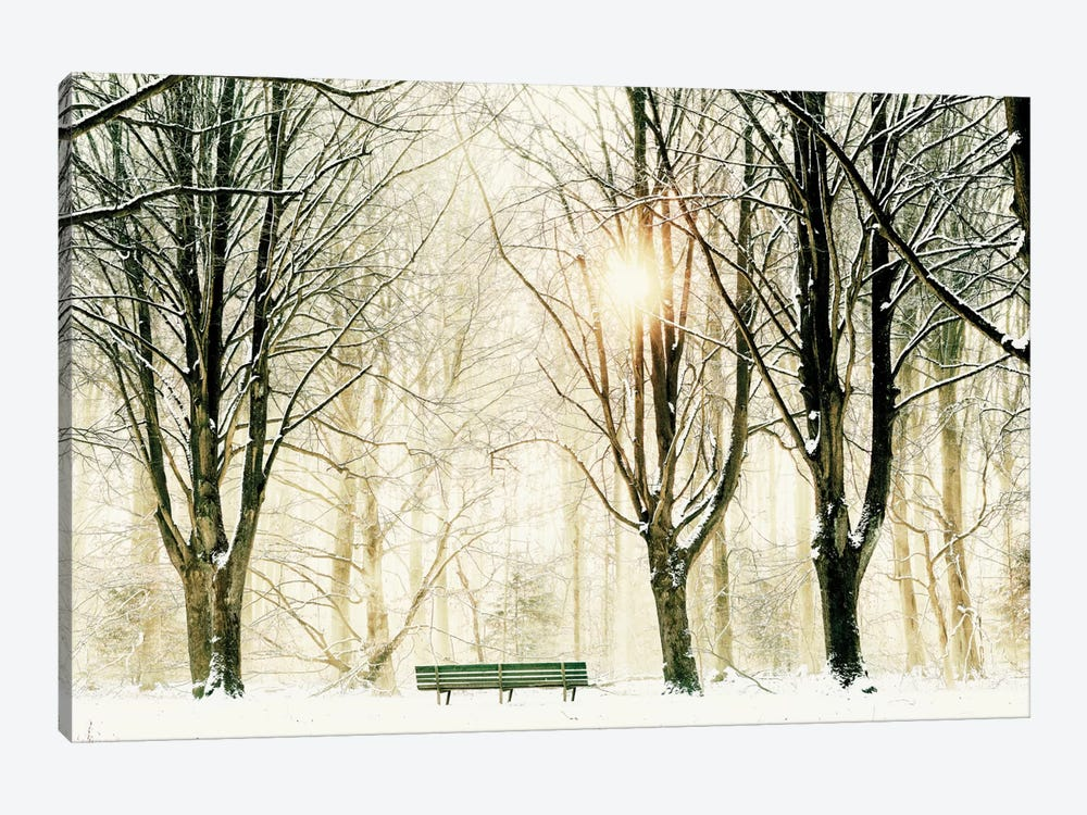 Too Cold To Sit by Lars van de Goor 1-piece Canvas Wall Art