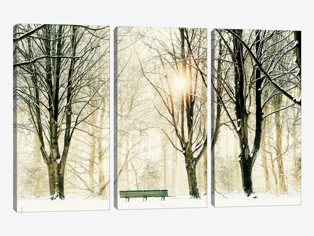 Too Cold To Sit by Lars van de Goor 3-piece Canvas Wall Art