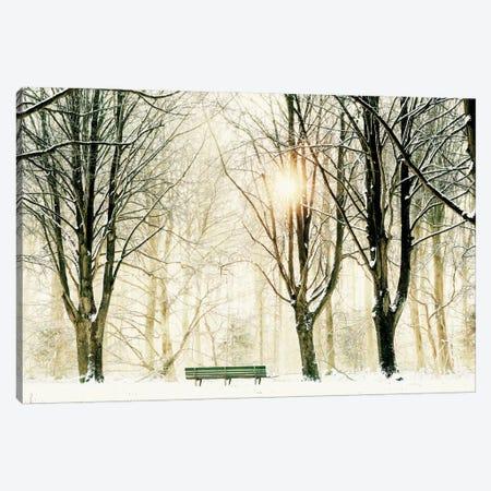 Too Cold To Sit 3-Piece Canvas #ICS677} by Lars van de Goor Canvas Wall Art