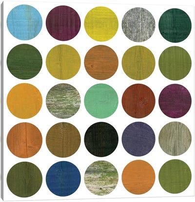 Rustic Rounds 4.0 Canvas Print #ICS679