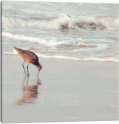 Soft Sea Canvas Print #ICS683