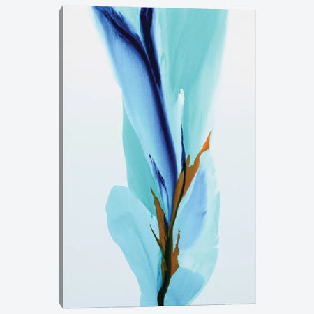 Spring's Calling Card Canvas Print #ICS687} by Patricia Coulter Art Print