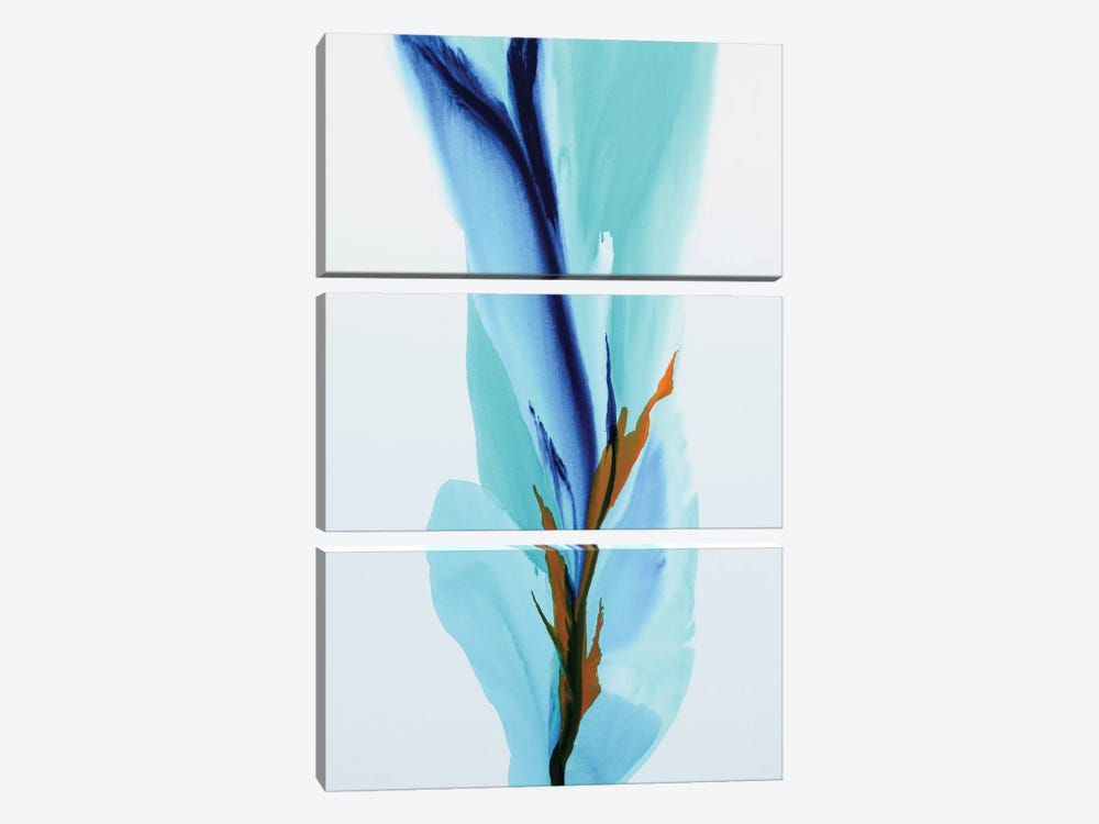 Spring's Calling Card by Patricia Coulter 3-piece Canvas Print