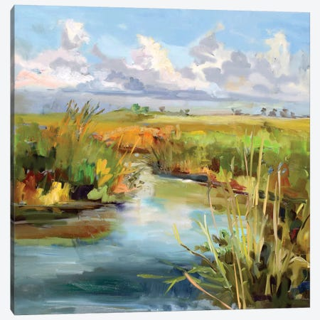 Afternoon Skies Canvas Print #ICS708} by Carol Hallock Canvas Print