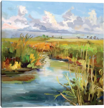 Afternoon Skies Canvas Art Print