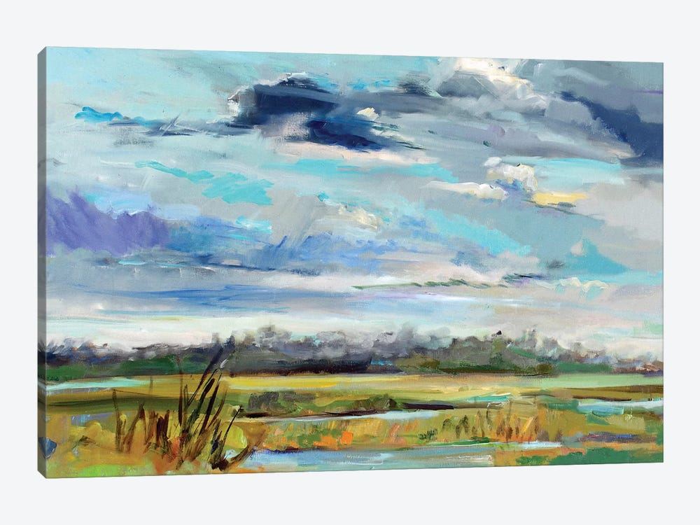 Marsh Skies by Carol Hallock 1-piece Canvas Art
