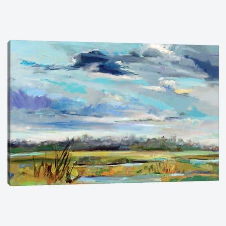 Marsh Skies Canvas Print #ICS709} by Carol Hallock Canvas Art Print