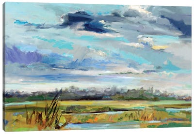 Marsh Skies Canvas Art Print