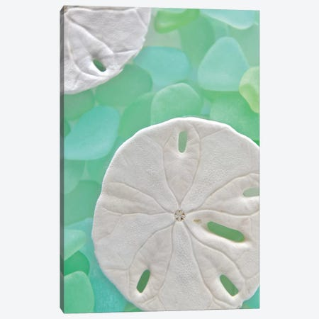 Seaglass 5 Canvas Print #ICS70} by Alan Blaustein Canvas Art