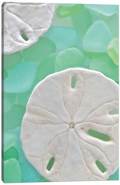 Seaglass 5 Canvas Print #ICS70