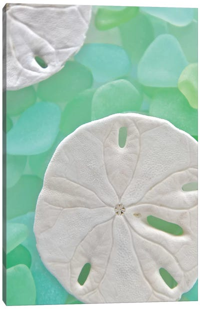 Seaglass 5 Canvas Art Print
