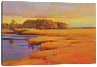 Autumn Marsh Canvas Art Print