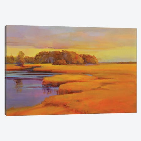 Autumn Marsh Canvas Print #ICS716} by Holly Ready Canvas Art Print