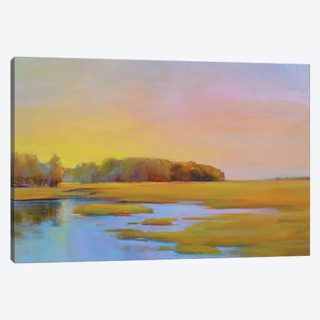 Summer Marsh II Canvas Print #ICS718} by Holly Ready Canvas Artwork