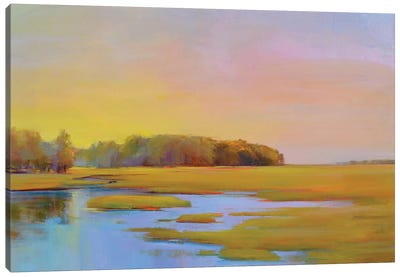 Summer Marsh II Canvas Art Print