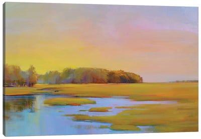 Summer Marsh Ii Canvas Artwork By Holly Ready Icanvas
