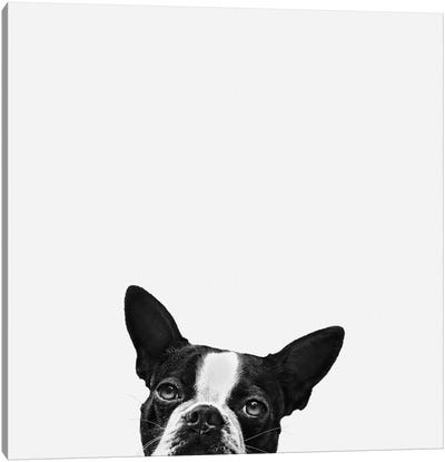 Loyalty Canvas Art Print
