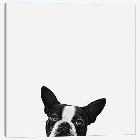 Loyalty Canvas Print #ICS71} by Jon Bertelli Canvas Art