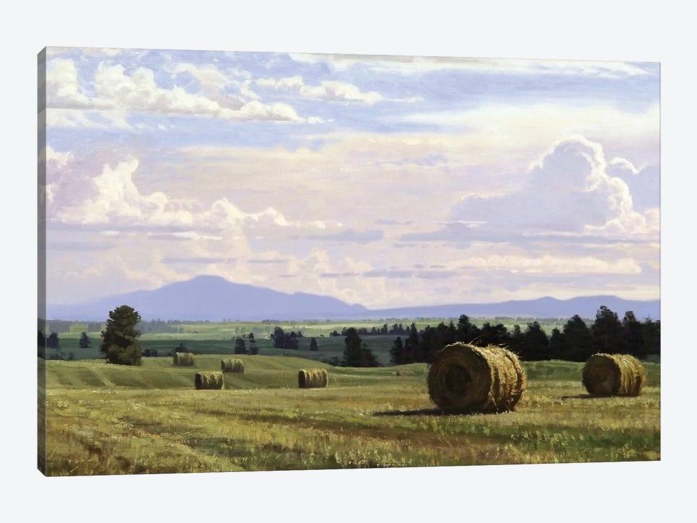Fresh Cut Hay by Jay Moore 1-piece Canvas Artwork
