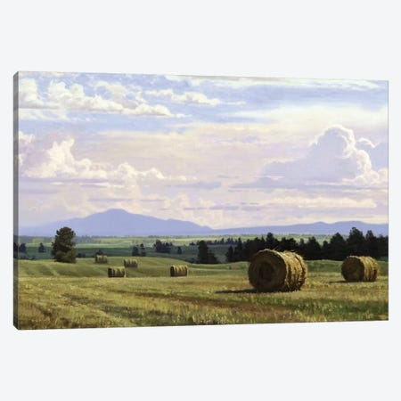 Fresh Cut Hay Canvas Print #ICS721} by Jay Moore Canvas Print