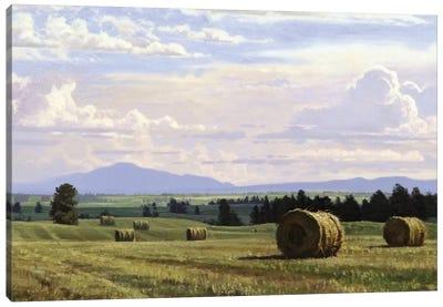 Fresh Cut Hay Canvas Print #ICS721