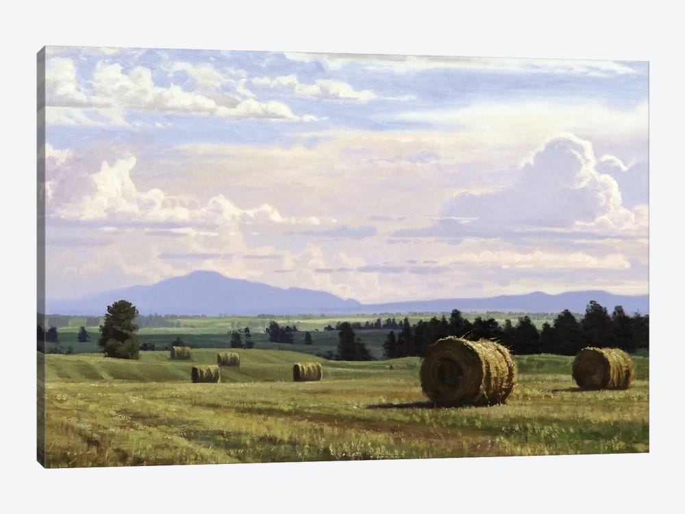 Fresh Cut Hay by Jay Moore 1-piece Canvas Artwork