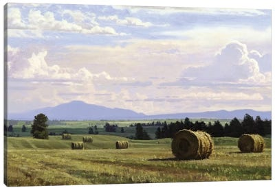 Fresh Cut Hay Canvas Art Print