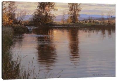 Just Before Nightfall Canvas Art Print