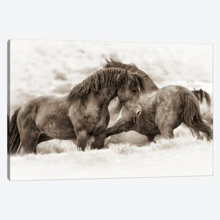 Brothers Canvas Print #ICS724} by Lisa Dearing Canvas Artwork
