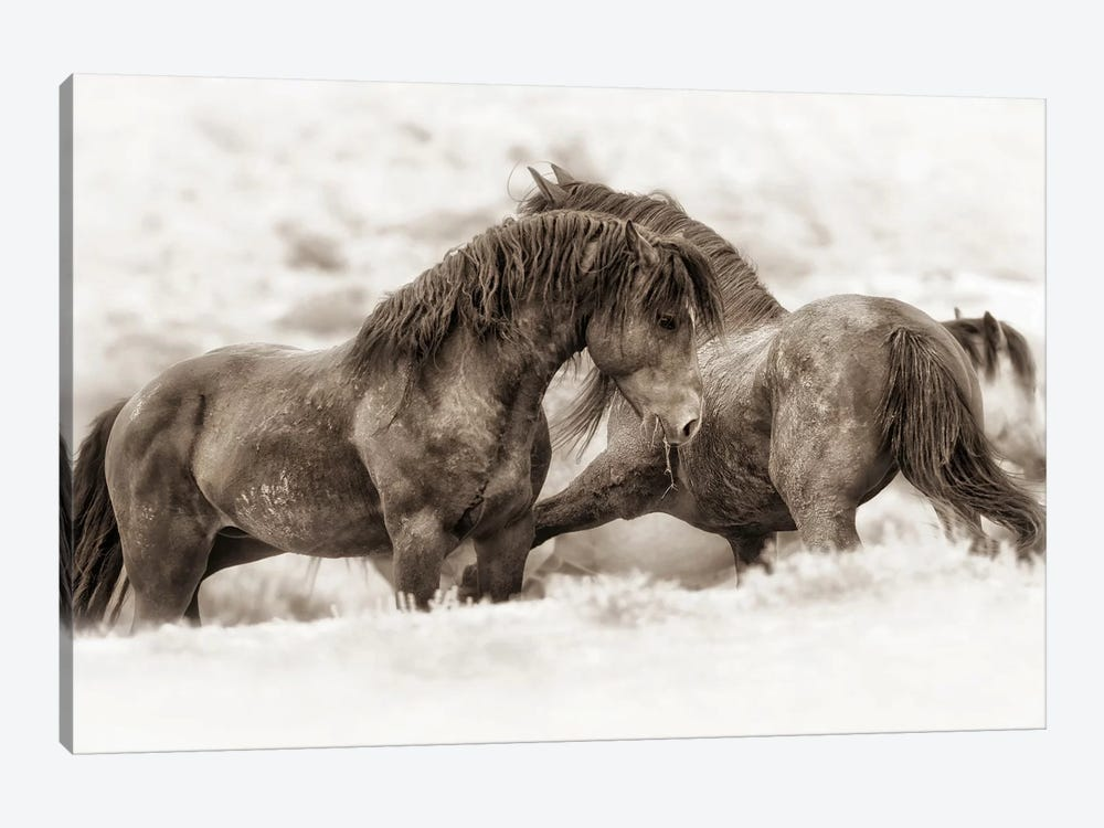 Brothers by Lisa Dearing 1-piece Art Print