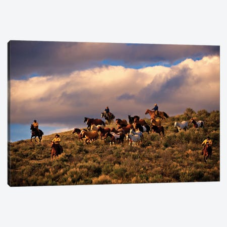 Chasing Thunder Canvas Print #ICS726} by Lisa Dearing Canvas Wall Art
