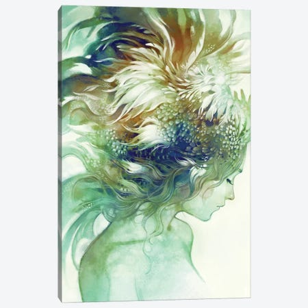 Comb Canvas Print #ICS739} by Anna Dittmann Canvas Artwork