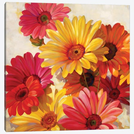 Daisies For Spring Canvas Print #ICS749} by Emma Styles Canvas Print