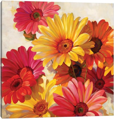 Daisies For Spring Canvas Art Print