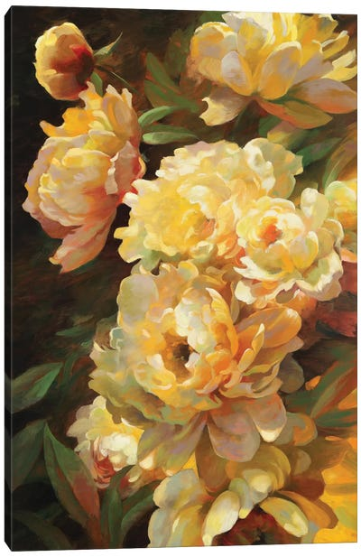 Peonies For Springtime Canvas Art Print