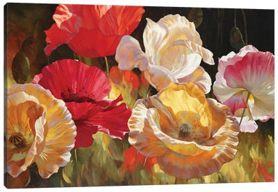 Poppy Celebration Canvas Art Print