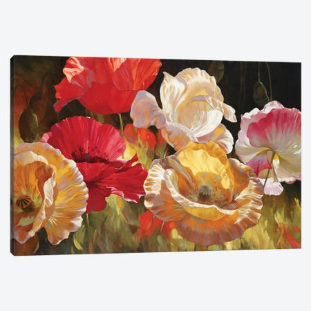 Poppy Celebration Canvas Print #ICS753} by Emma Styles Canvas Wall Art