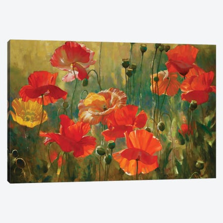 Poppy Fields Canvas Print #ICS754} by Emma Styles Canvas Print