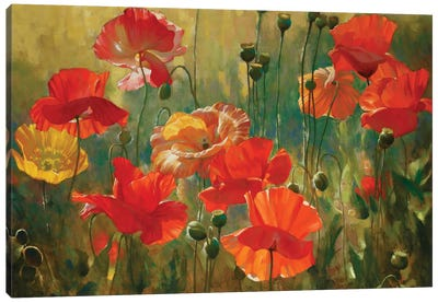 Poppy Fields Canvas Print #ICS754