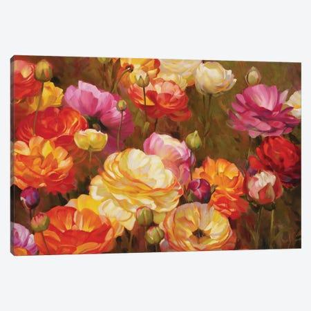 Ranunculus Garden Canvas Print #ICS755} by Emma Styles Art Print
