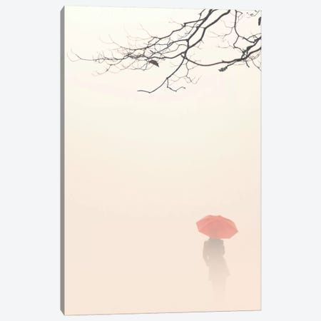 In Autumn Fog Canvas Print #ICS75} by Nicholas Bell Photography Canvas Print
