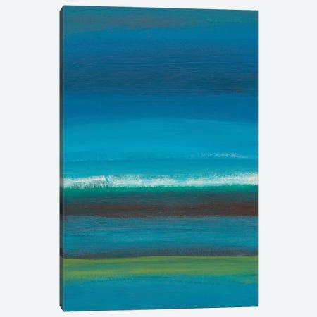Night Coast I Canvas Print #ICS764} by Jan Weiss Canvas Art