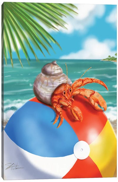 Beach Friends - Hermit Crab Canvas Art Print