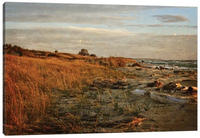 Autumn At The Mouth Of The Big Sable Canvas Art Print
