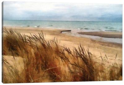 Pier Cove Beach With Autumn Grasses Canvas Art Print