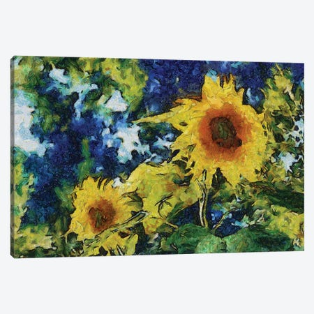 Sunflowers Canvas Print #ICS845} by Michelle Calkins Canvas Art Print