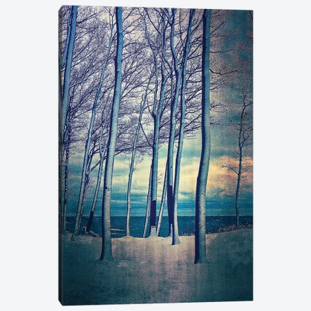 Winter At Lake Michigan Canvas Print #ICS850} by Michelle Calkins Canvas Print