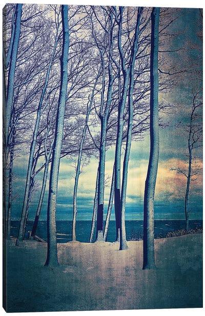 Winter At Lake Michigan Canvas Art Print