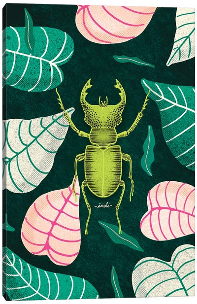 Bug I Canvas Art Print